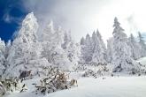 Wa11papers.ru_Winter_1920x1280_214