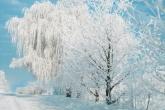 Wa11papers.ru_Winter_2362x1732_173