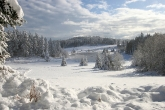 Wa11papers.ru_Winter_2560x1600_022
