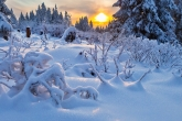 Wa11papers.ru_Winter_2560x1600_038