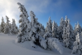 Wa11papers.ru_Winter_2560x1600_042