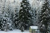 Wa11papers.ru_Winter_2560x1600_047