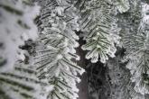 Wa11papers.ru_Winter_2560x1600_054