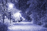 Wa11papers.ru_Winter_2560x1600_066