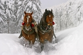 Wa11papers.ru_Winter_2560x1600_070