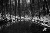 Wa11papers.ru_Winter_2560x1600_075