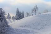 Wa11papers.ru_Winter_2560x1600_115