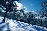 Wa11papers.ru_Winter_2560x1600_175