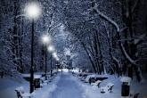 Wa11papers.ru_Winter_2560x1600_177