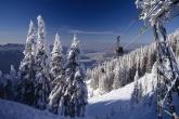 Wa11papers.ru_Winter_2560x1600_178