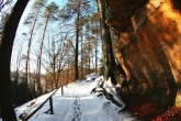 Wa11papers.ru_Winter_2560x1600_212
